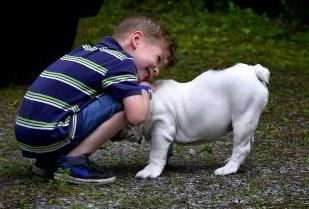 γαστρεντερίτιδα από σκύλο στον άνθρωπο 300